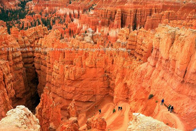 amphitheatre a Bryce canyon blog