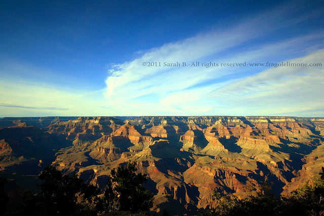 Grand Canyon blog