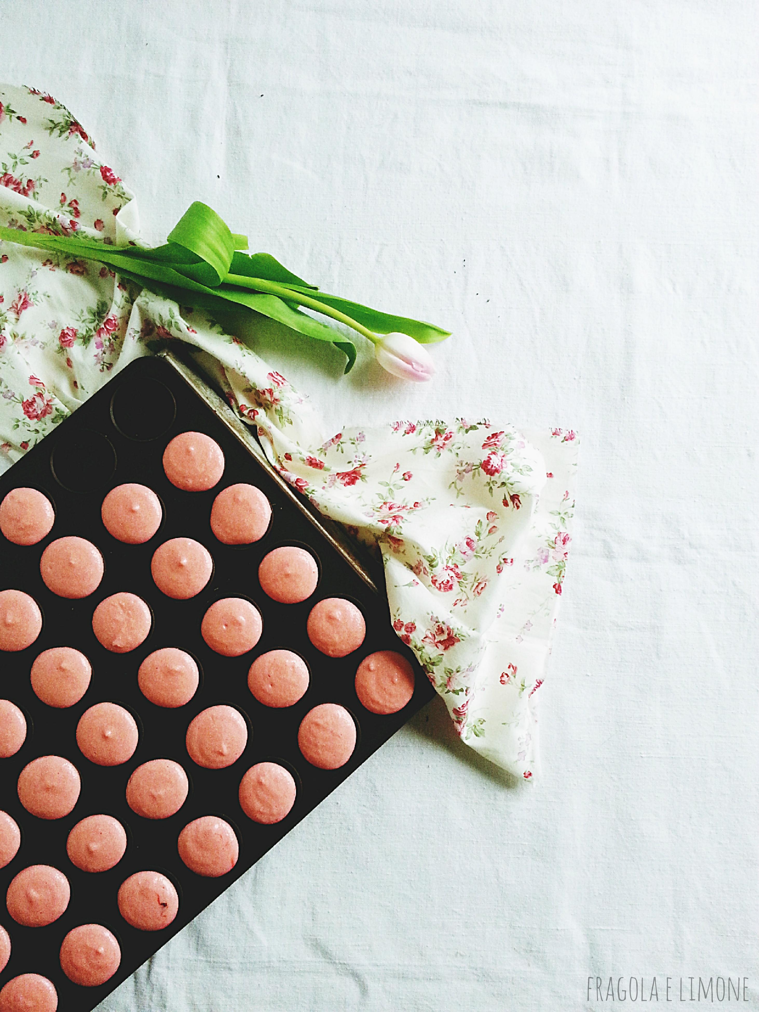 macaron crudi