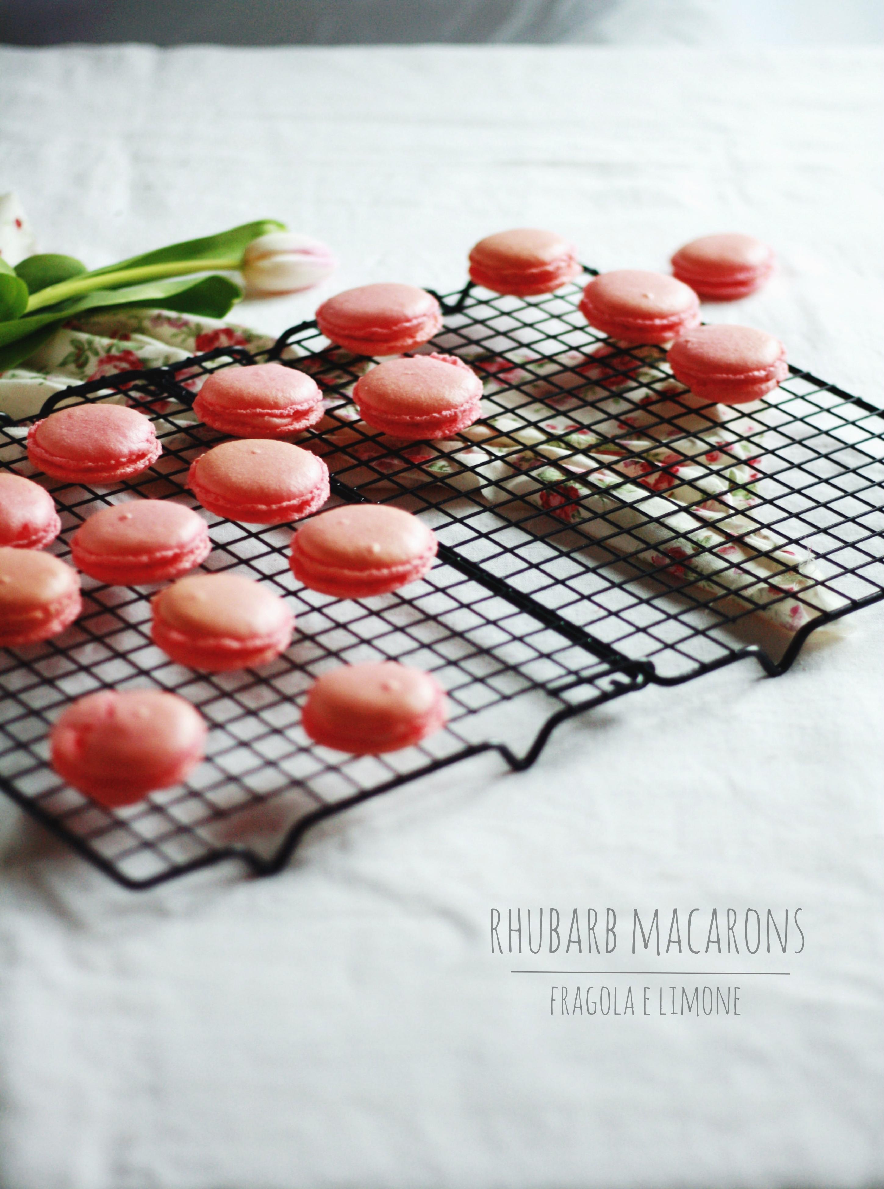 rhubarb macaron