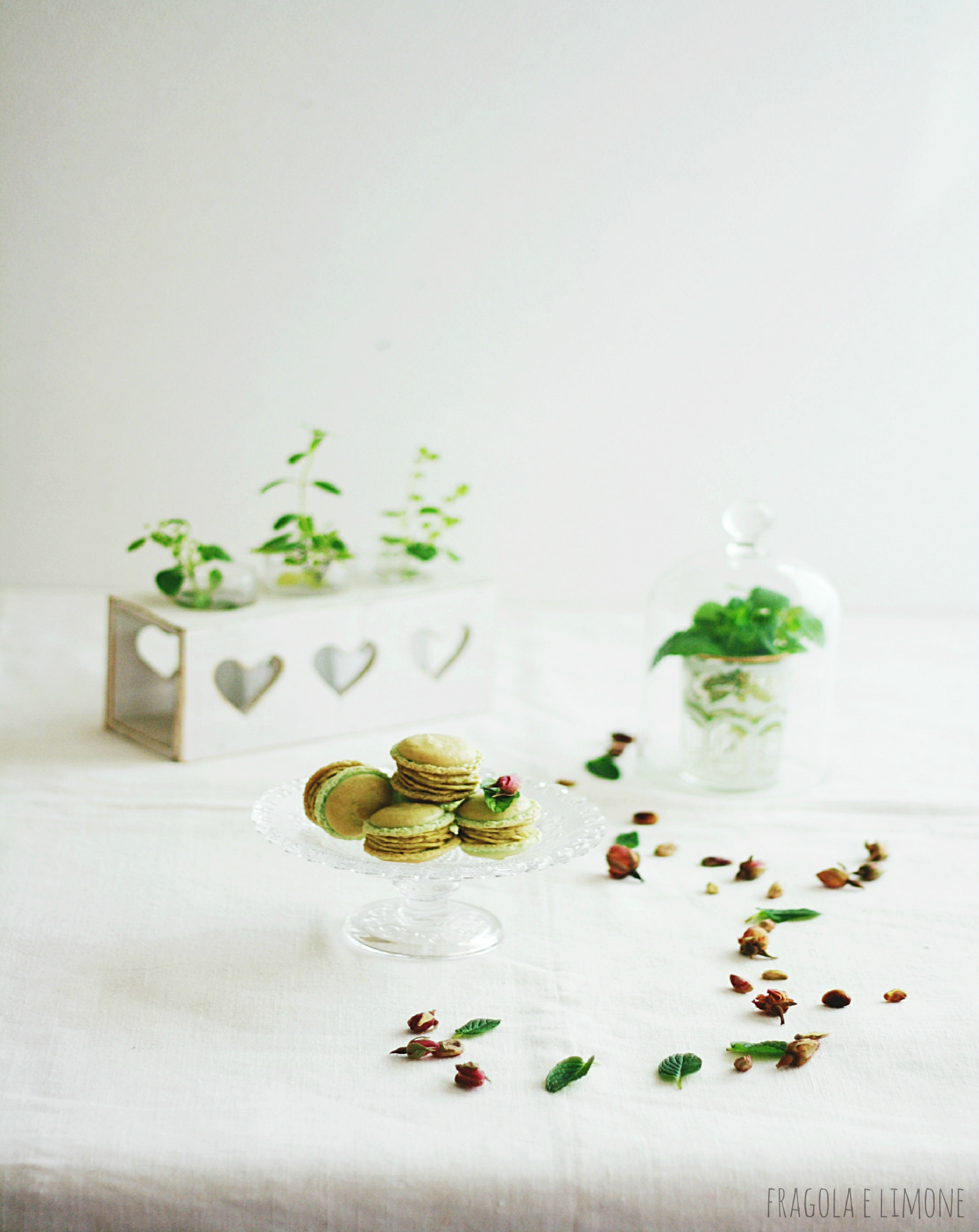 pistachio and raspberry macaron (6)